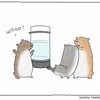 small_hamster_party-600x500.jpg